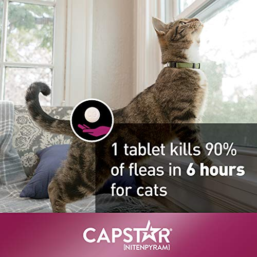 Fast-Acting Oral Flea Treatment for Cats,