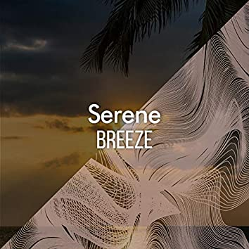 # 1 Album: Serene Breeze