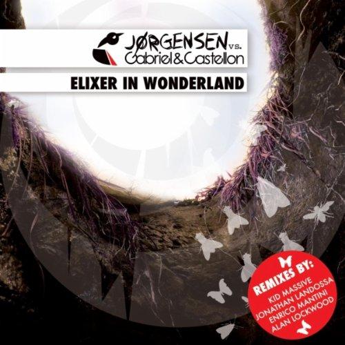 Amazon.com: Elixer in Wonderland (Mad Hatter Mix): Jorgensen ...