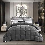 HIG 1 Piece Dark Gray All Season Natural Down Comforter Duvet Insert Oversize Queen - Box Stitched - Medium Warm -750+ Fill Power - 48 oz Fill Weight - 100% Cotton Shell(Chelsea)