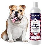 Petpost | Shampoo all'Argan per Cani - per la Cura, la Protezione e Il Ringiovanimento Naturale della Pelle e del Pelo Secco del Cane - Formula all'Olio di Argan e all'Aloe (474 ml)