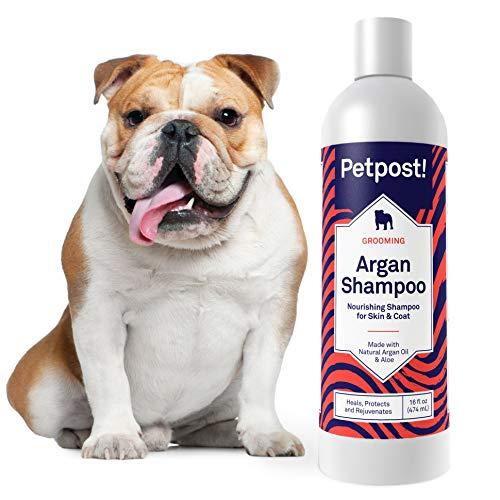 Petpost | Shampoing pour Chiens à l'huile d'argan - Soigne, protège et rafraîchit la Peau et Le Pelage secs de Votre Chien - Formule à l'huile d'argan et à l'aloe (474 ml)