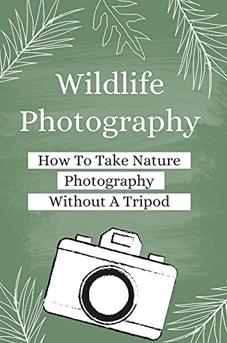Wildlife Photography: How To Take Nature Photography Without A Tripod: How To Use Light And Background (English Edition)