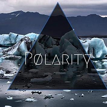 Pølarity