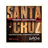 Santa Cruz Parabolic Tension Acoustic Guitar Strings Mid Tension