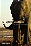 The Elephants Secret Sense.