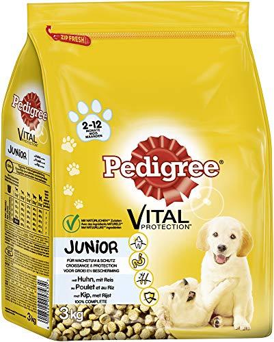 Pedigree Hundefutter Trockenfutter Junior mit Huhn und Reis, 3 Beutel (3 x 3kg)