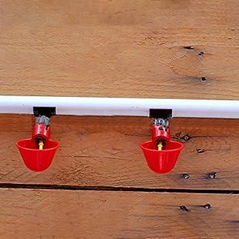 jgashf Abreuvoir Automatique Tasses d'eau Potable Rouge en Plastique pour Oiseaux Poule Volaille - 5PCS /6PCS/12PCS Buveur Volaille Eau Potable Tasses volaille Poulet Poule Bird (5PCS, Rouge)