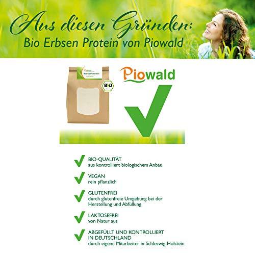 BIO Erbsenprotein – Isolat – 1 kg Pulver - 2