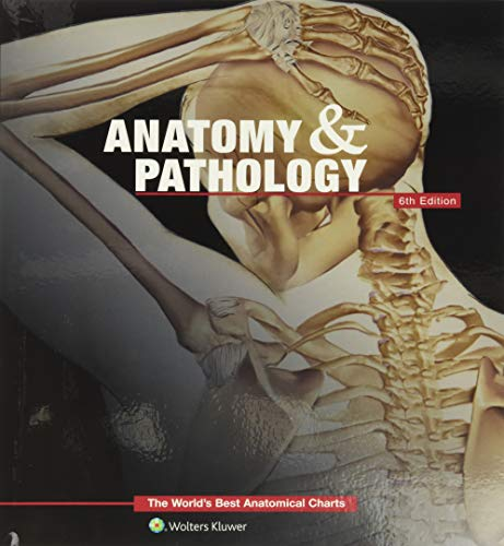 Anatomy & Pathology: The World's Best Anatomical Charts