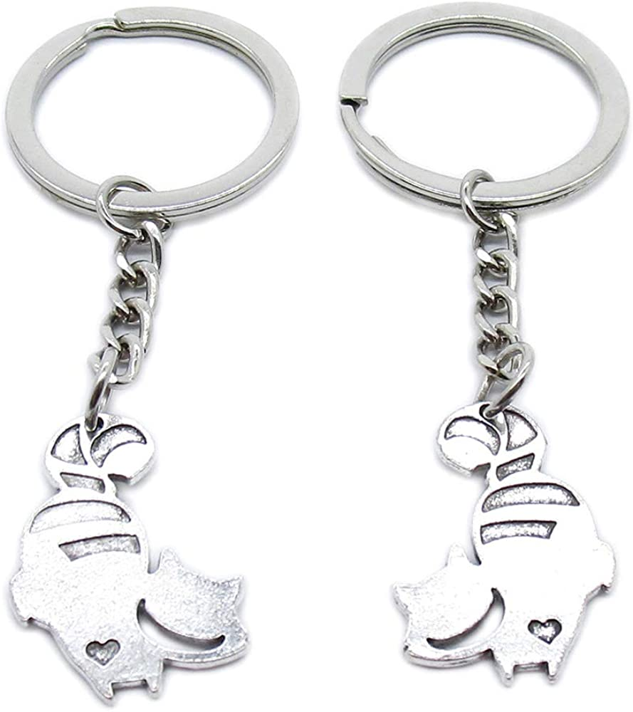 Antique Silver Plated Keyrings Keychains Special price for a Max 67% OFF limited time Raccoon Cat XN0N4 R Key