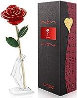 Gomyhom Rozencadeau voor vrouwen, opvallende cadeaus voor vrouwen/vriendin/moeder/oma, gouden 24 karaats roos met tekst...