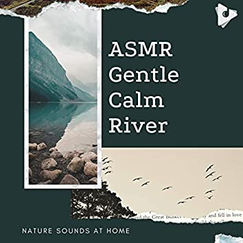 ASMR Gentle Calm River