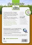 Zoom IMG-1 piante da frutto e vite