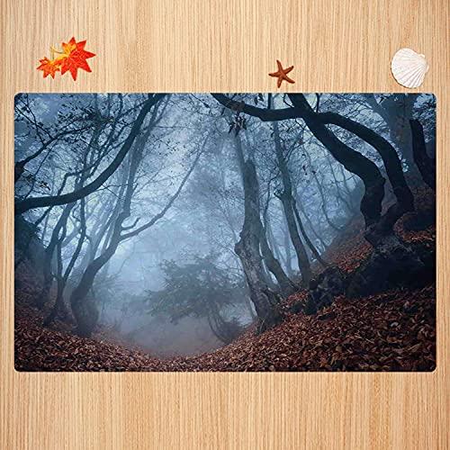 Tapis de Bain antidérapant,Décor de Ferme, Sombre forêt de Crimée Sombre avec des buissons tourbillonnants Myst Spook Tapis Absorbant Tapis de Sol Microfibre Super Doux 50 x 80cm