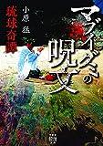 琉球奇譚 マブイグミの呪文 (4) (竹書房怪談文庫) - 猛, 小原