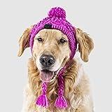 Canada Pooch Polar Pom Pom Dog Hat (S, Pink)