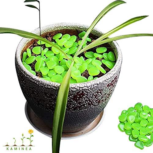 100 Piedras Verde Fluorescentes | Gravilla Luminosa para Decoración Interior y Exterior...