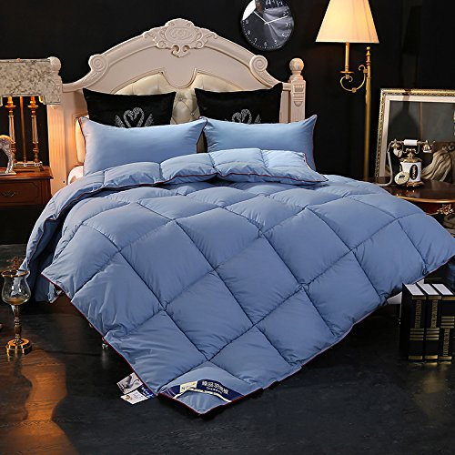 LTL LUOTIANLANG El Lujoso Thick Warm Winter Warm White Goose Down Duvet...
