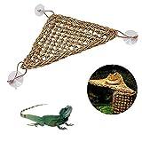 Renoble Barbudo - Amaca Rettile, Sdraio con Ventose, in Fibra di Erba Marina, 100 Naturale, per Arrampicata, gambaleoncini Serpenti Gecko Ordinary Small Triangle Hammock