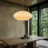 TFCFL Modern Bubble Pendant Lamp Hanging Light Chandelier Saucer, Round Lantern Restaurant Chandelier Pendant Bubble Lamp Bubble Chandelier for Living Room Kitchen and Coffee Shop Japanese Style