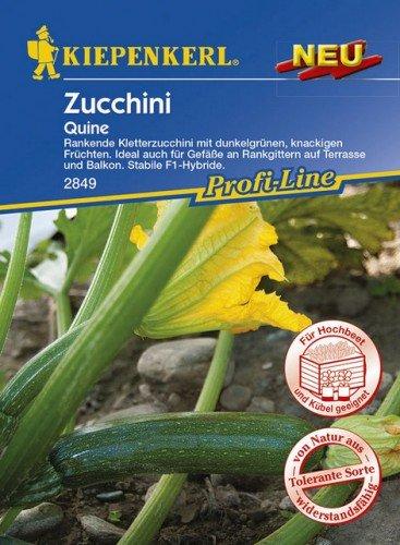 Kiepenkerl Zucchini Quine