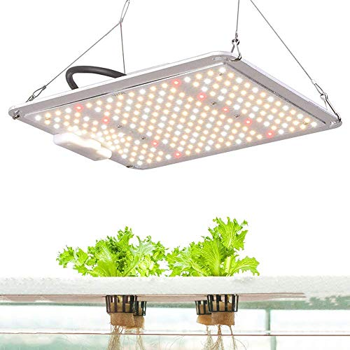 Plant Grow Lights for Indoor Plants Full...