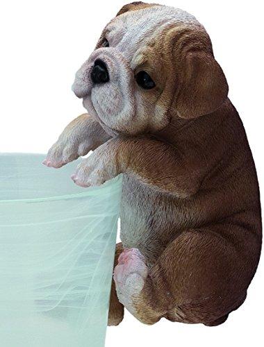 Bulldog Rotatif 19 cm