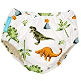 Charlie Banana Baby Reusable and Washable Swim Diaper for Boys or Girls, Dinosaurs, X-Large