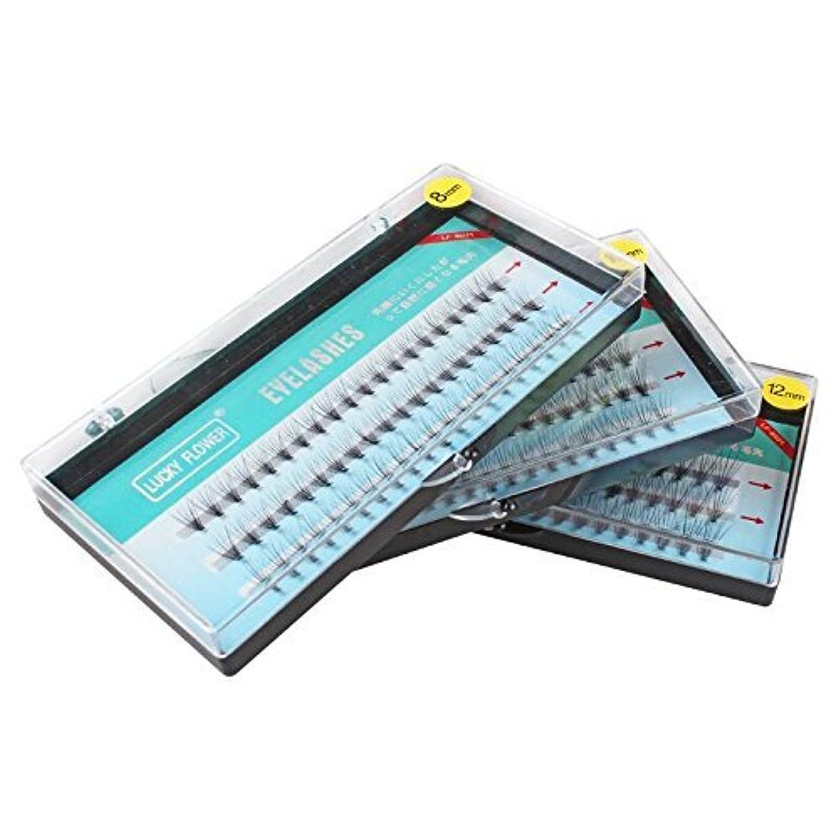 コース水研磨高品質10本束 8mm Cカール まつげエクステ フレア セルフ 素材 マツエク (10mm)