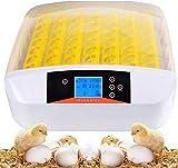 Hesyovy 55 uova, incubatori per pollame, macchina da cova digitale intelligente, con indicatore di temperatura a LED e regolazione dell'umidità, incubatore automatico