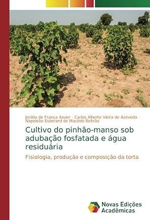 Cultivo do pinhão-manso sob adubação fosfatada e água residuária: Fisiologia, produção e composição da torta
