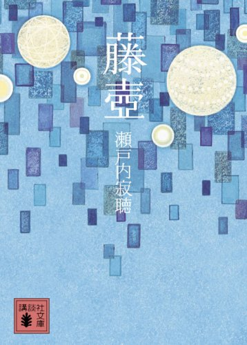 藤壺 (講談社文庫)