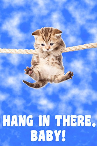 Hang in There Baby Kitten Retro Motivational Cool Wall Decor Art Print Poster 12x18
