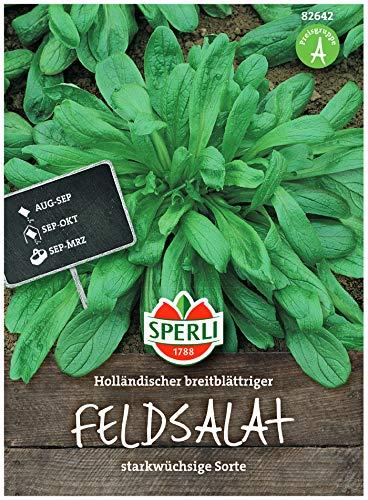 Premium Feldsalat Holländischer Breitblättriger | Frostharte Sorte | Großblättrig Vitaminreich und Schnellwüchsig | Aussaat bis Oktober | Samenfeste Feldsalat Samen