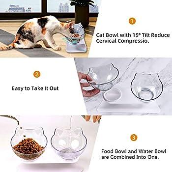 Double Bol pour Chat, Gamelle pour Chat, Inclinable à 15° Double Gamelle Chat Surélevée, Chargeur pour Animaux De Compagnie à Double Bol avec Support De Surélevé pour chats et chiens (2 transparents)