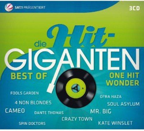 Die Hit Giganten-Best of One Hit Wonder