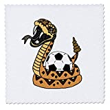 3dRose Funny Cute Rattlesnake Squeezing Soccer Ball Snake Cartoon - Quilt Squares (qs_328011_10)