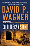 Cold Tuscan Stone (Rick Montoya Italian Mysteries Book 1)