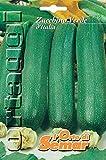 l'orto di semar semi di zucchino verde milano in busta