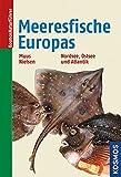 Die Meeresfische Europas: in Nordsee, Ostsee und Atlantik - Bent J. Muus