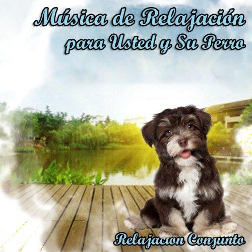 Música de Relajación para Su Perro
