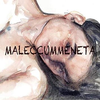 Maleccummeneta