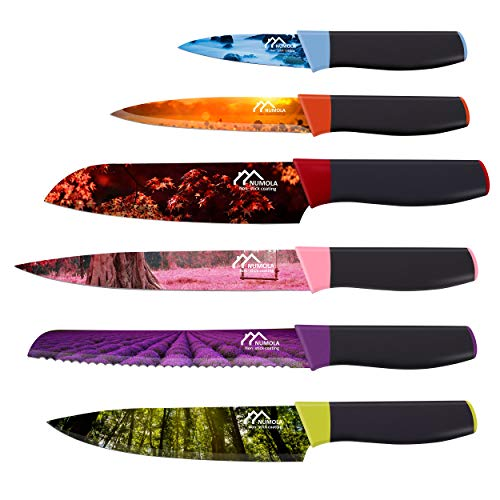 Numola 6 Piece Colorful Kitchen Knife Set, Chef Knife Set Landscape Cooking Knives Non Stick Coating, Box Knife Set for Housewarming Gifts New Home for Women Men