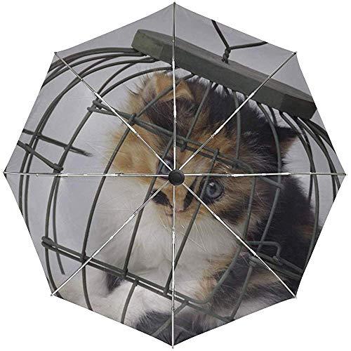 Automatischer Regenschirm Kitten Cell Spotted Travel Convenient Windproof Waterproof Fast Dry Folding Auto Öffnen Schließen