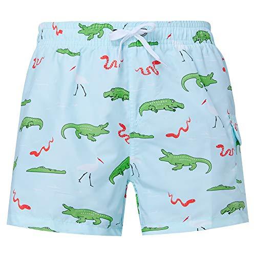 Dinosaurs Silhouettes Pattern Mens Beach Board Shorts Surf Yoga Swimming Shorts