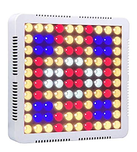 Lampe croissance plantes, LED élèvent lumière pour les plantes d'intérieur Lampe croissance 100 LEDs 80W Rouge Bleu Spectrum Plant Lights Panneau d'ampoule pour les légumes et les fleurs semis serre