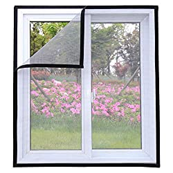 Best Cat Proof Window Screens