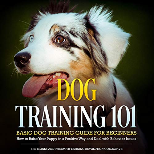 Dog Training 101: Basic Dog Training Guide for Beginners audiobook cover art