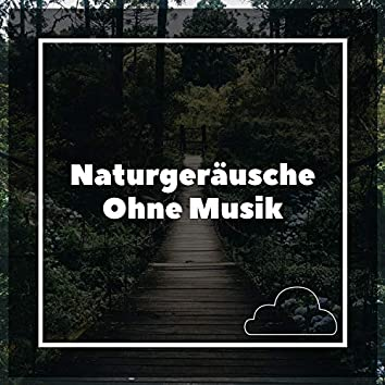 Naturgeräusche Ohne Musik